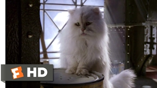 Video Stuart Little 2 (2002) - In the Can Scene (7/10) | Movieclips download MP3, 3GP, MP4, WEBM, AVI, FLV Januari 2018