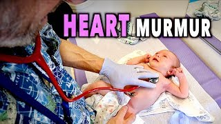 NEWBORN HEART MURMURS: What You Need to Know   Dr  Paul