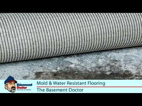 Safe Bat Flooring Water Mold Resistant Rubber Vinyl Doctor Columbus Oh You