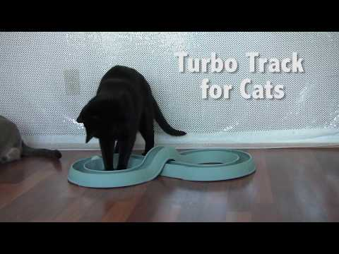 Bergan Turbo Track Cat Toy - Super Fun Interactive Toy for Cats