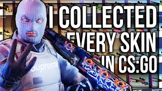 I COLLECTED EVERY SKIN IN CS:GO ($100.000+)