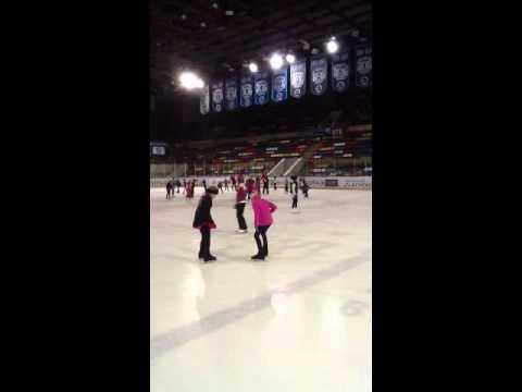 Малая спортивная арена Лужников