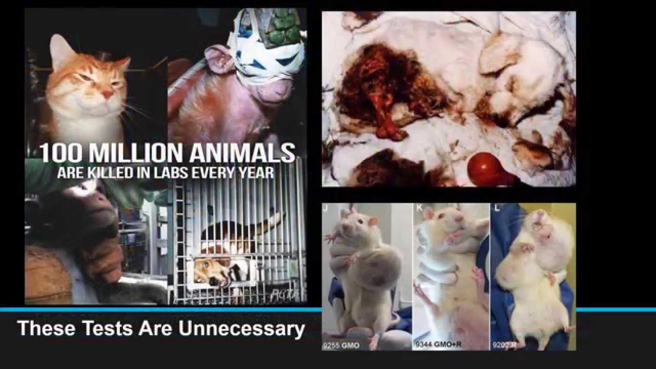 arguments against vivisection