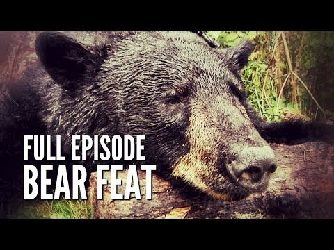 Canadian Black Bear Hunt -