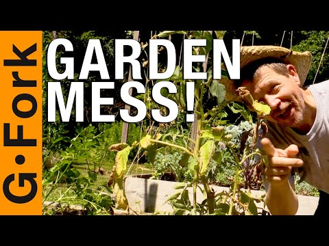 Your Garden A Mess? Mine Too! - 동영상