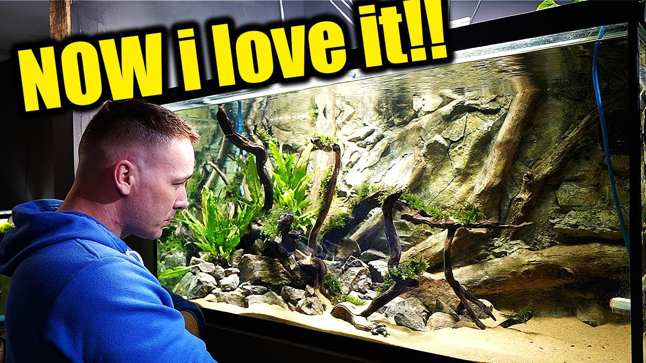 An aquarium the king of DIY actually likes
