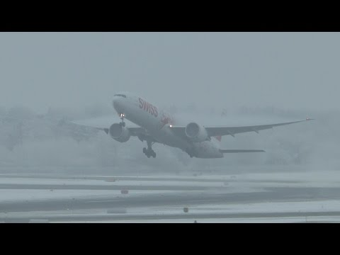 First of the year - Zurich Airport covered in fog and snow