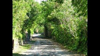 Bermuda Railway Trails Bike Ride