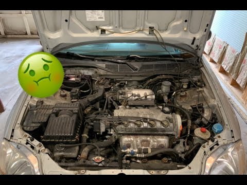 Cleaning the Engine Bay of the Civic