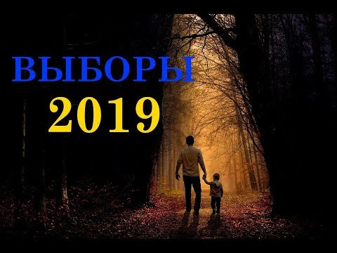 Реальный рейтинг кандидатов в президенты Украины сегодня. Онлайн Таро