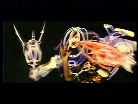 Opening To The Wedding Singer UK VHS 1999