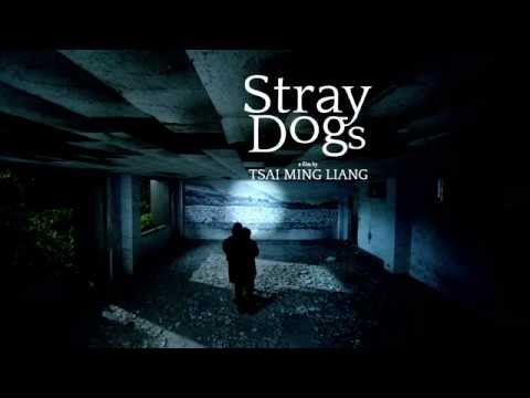 STRAY DOGS  Tsai Mingliang