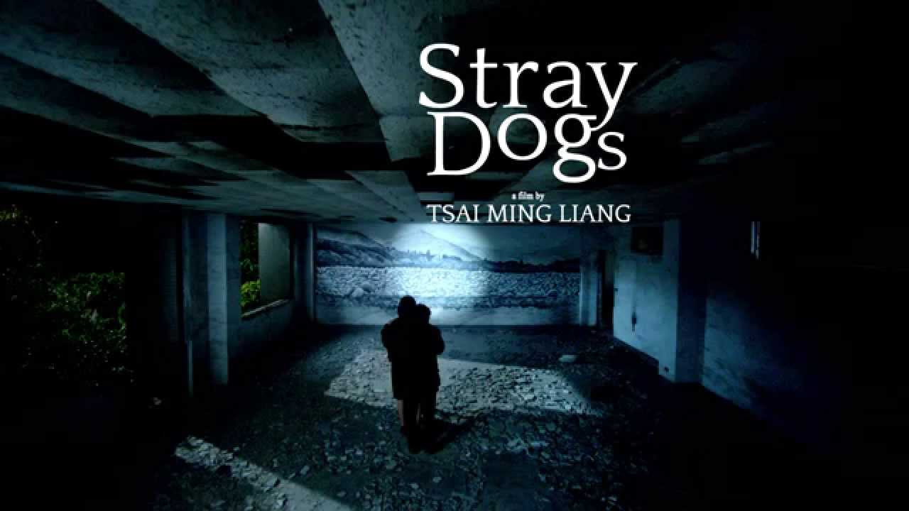 The best: stray dogs tsai ming liang online dating