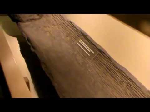 Prehistoric Indian Dugout Canoe found in Ohio -circa 1500 AD