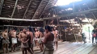 Video Tribu los Boras Iquitos download MP3, 3GP, MP4, WEBM, AVI, FLV Agustus 2018