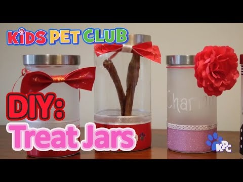 DIY Dogs How to Make Your Own Treat Jar For Your Pet