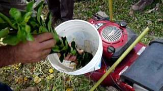 Home made lawn mower chipper
