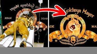 12 Datos Asombrosos Que no Conocías Sobre Los Logotipos Famosos thumbnail