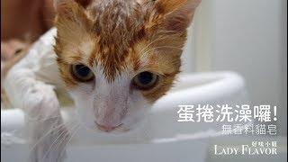 【蛋捲來洗澡!】超級乖的啦~~ thumbnail