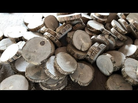 How to Make Wood Slices for Crafts (Small Branches)
