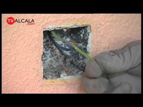 Instalacion de tomacorriente electrico funnycat tv for Como instalar un enchufe