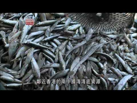 Seafood Trade 5   No Fish