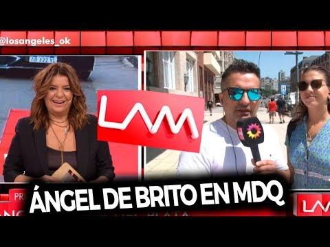 Los ángeles de la mañana - Programa 17/01/20 - Ángel de Brito en Mar del Plata