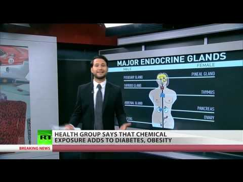 Diabetes, obesity, cancer linked to common chemicals – health group