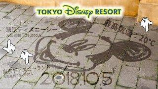 2018.10.5 東京ディズニーシー 入園者数:19000人 東京ディズニーランド...