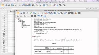 How to calculate a One Way Anova using SPSS (Analysis of Variance)
