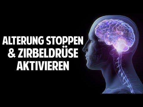 Alterung stoppen   Zirbeldrüse aktivieren   Denkleistung erhöhen - Prof. Dr. Dr. Enrico Edinger