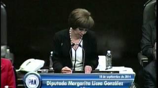 Dip. Margarita Licea Y Dip. Carlos García (pan) - Comparecencia Del Dr. Luis Videgaray (ronda 1)