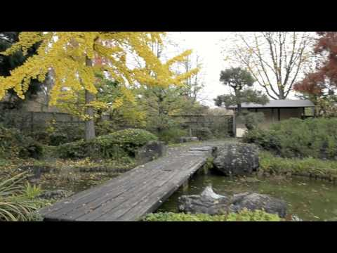 Autumn in Bonn and Brühl - Glidecam HD 4000