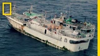 Lawless Longliners | Lawless Oceans