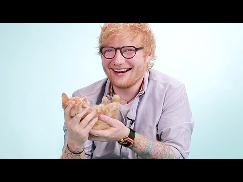Ed Sheeran Plays With Kittens While Answering Fan Questions