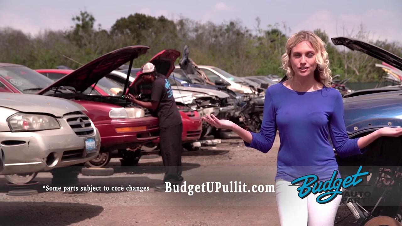 Home Budget U Pull It