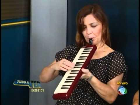 Amigos no Choro - Noites Cariocas (programa tudo a ver Record Parte 3/3)