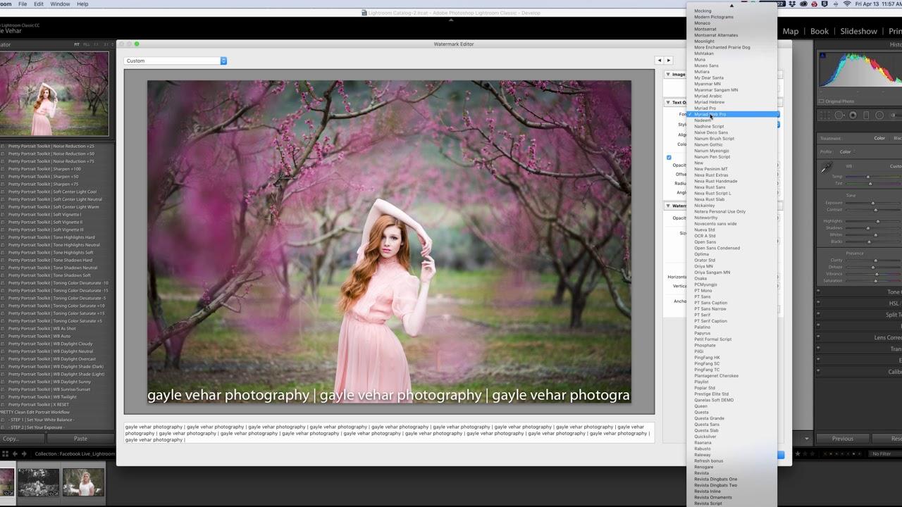 How to add watermark to all photos in lightroom