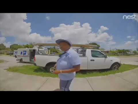 Mark - Surveillance video shows postal workers throwing packages over a fence