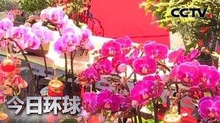 [今日环球]金鼠新春倒计时| CCTV中文国际
