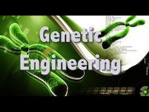 Human Genetic Engineering Legal?? DNA Modification Tran-humanism