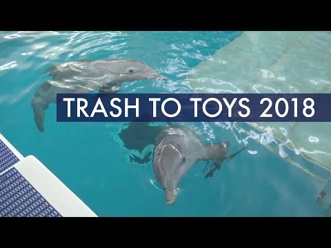Dolphins Pick Their Favorite Recycled Toys for Earth Day - Trash to Toys 2018