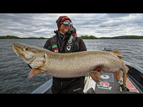 JUMBO Fall Muskie Fishing! - Go Angling E7