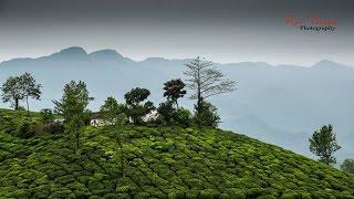 Romantic homestay in Wayanad |Chateau Woods Review| Best resort in Wayanad, Kerala
