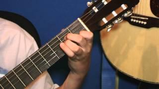 В мире животных на гитаре ( отрывок)