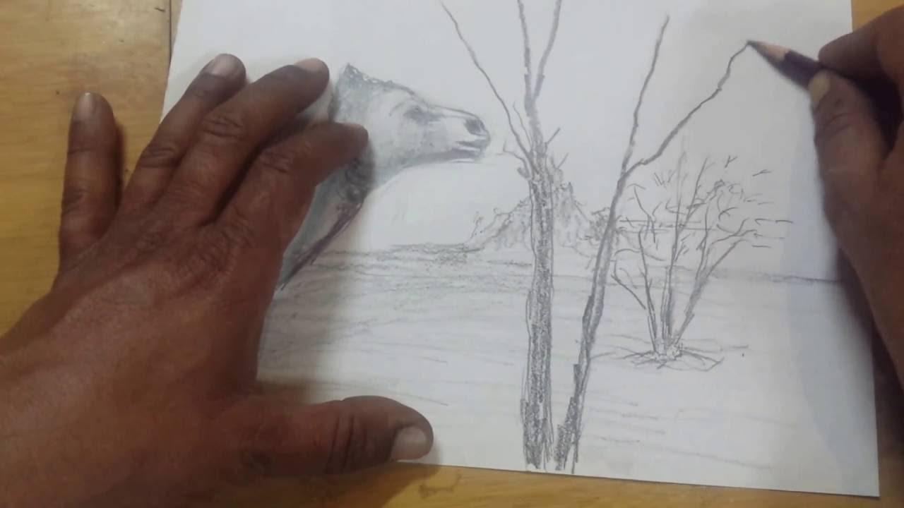 رسم من الصحراء Youtube
