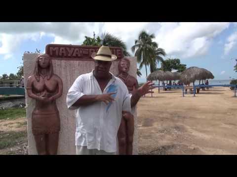 Playa de Mayabeque   Manglar Vivo