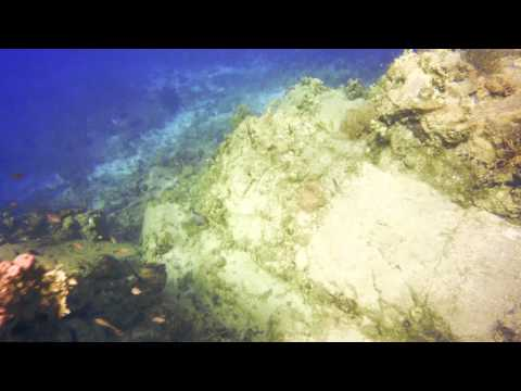 4K Scuba diving in St. Thomas / US Virgin Islands
