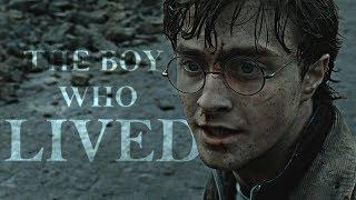 Harry Potter   The Boy Who Lived