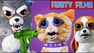 Feisty Cats vs. Dogs Compilation! Who Is Feistier?